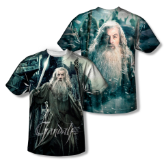 The Hobbit The Battle of the Five Armies Wizard Youth Sublimation Front & Back Print T-shirt