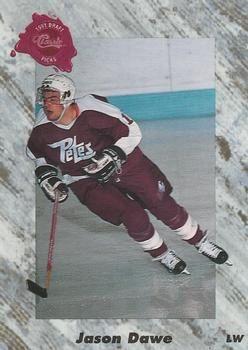 1991 Classic #31 Jason Dawe - Standard