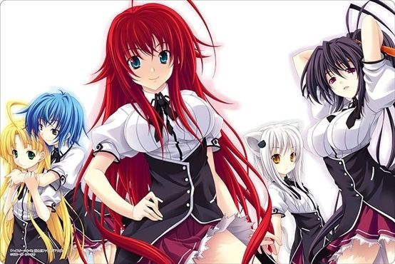 "Rubber Mat Collection ""Fujimi Fantasia Bunko: High School DxD"" Vol.433 by Bushiroad"
