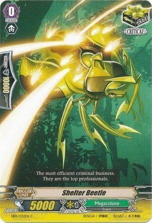 EB01/032EN (C) Shelter Beetle