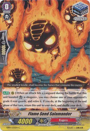 EB09/035EN (C) Flame Seed Salamander