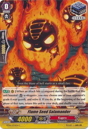 BT04/074EN (C) Flame Seed Salamander