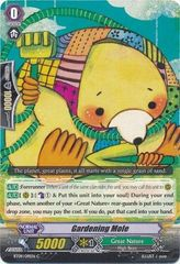 BT09/091EN (C) Gardening Mole