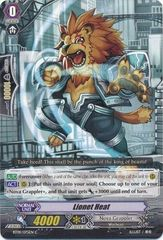 BT09/075EN (C) Lionet Heat