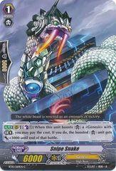 BT10/069EN (C) Snipe Snake