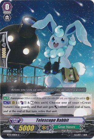BT13/101EN (C) Telescope Rabbit