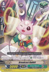 G-BT02/091EN (C) Broadcast Rabbit