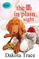 The Little in Plain Sight, The Hidden Little Secrets, Dakota Trace, ageplay, May to Dec