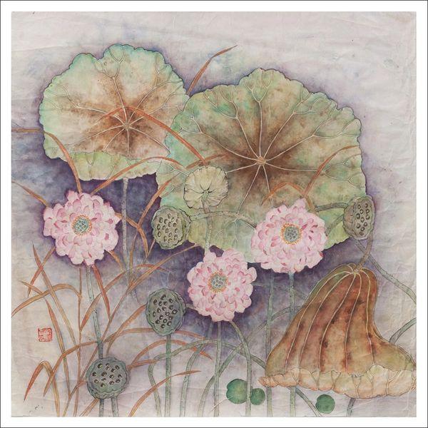 Giant Pink Lotus Flowers