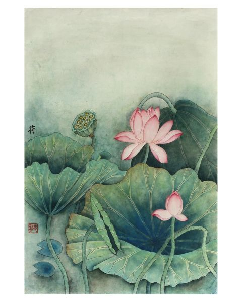 Pink Lotus Flowers on Pale Green
