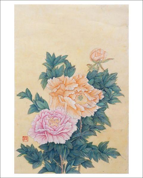 Pink and Orange Chrysthanthemums