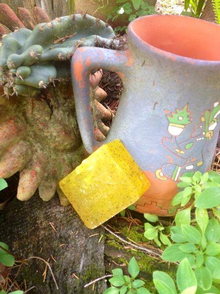 Gardeners Hand Soap