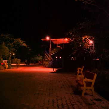 Dandeli Resort with best amenities and beautiful jungle resort. Kingfisher jungle resort.