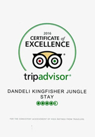 Top Dandeli Resorts is awarded by Tripadvisor Excellence Award.