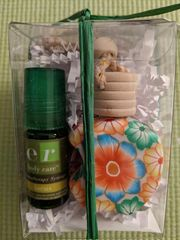 ROAD SAGE 'focus' synergy and car diffuser gift set