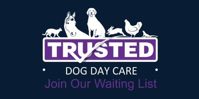 Trusted Pet Carers dog day care logo