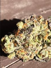 Rare Bear Skunk Breath 3.5