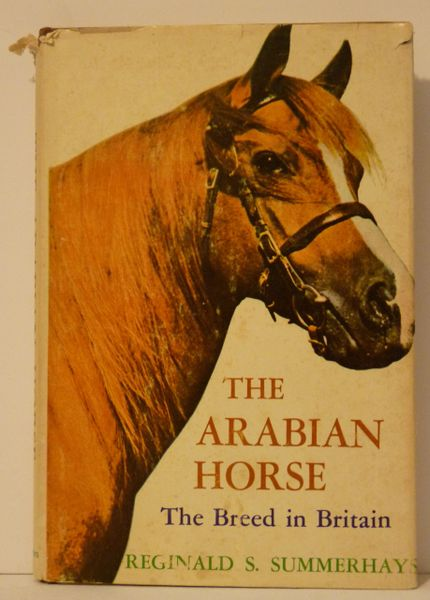 The Arabian Horse by Reginald Summerhayes