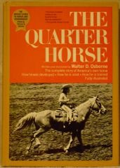 The Quarter Horse by Walter Osborne