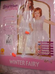 Winter Fairy 882077