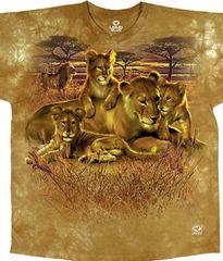 Lion Family 2X