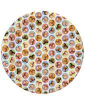 Mini-Boob Plates - Pack of 8