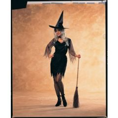 Sexy Witch Item# 55006(R)