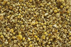 Chamomile, Egyptian whole