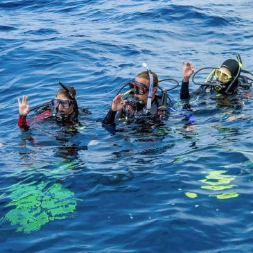 Crystal Blue Diving, Special Events, fun dives, local diving