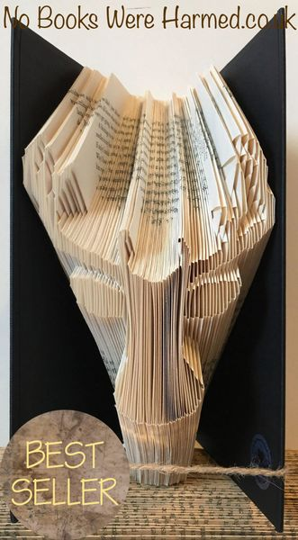 Steve The Stag. Yes. Steve : : Scottish countryside, wildlife : : Hand Folded Book Art