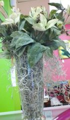 Floral Succulant Centerpiece