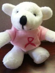 Breast Cancer Awareness Mini Bear