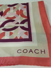 Coach Signature Multicolor Kristin Chain Scarf #F83517