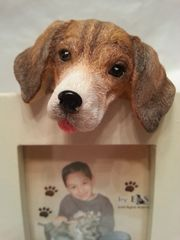 Pet Frame-Beagle
