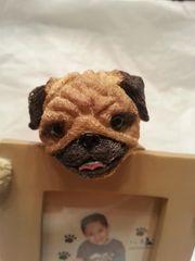 Pet Frame-Pug