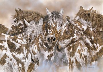 """Packherd"" - 20"" x 26 1/2"" Limited Edition Print"