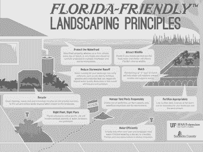 Florida Friendly Landscape Principles