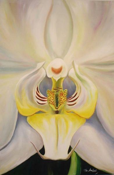 """""""Studio Orchid"""""""