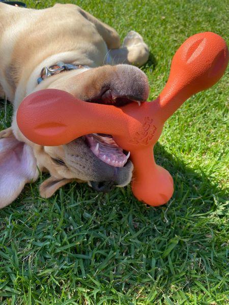 West Paw Skamp Flyer-Inspired Fetch Dog Toy - Orange