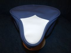 Beach Cruiser Seat Upholstery Baby Blue And White