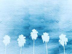 """""""California Dreaming"""""""