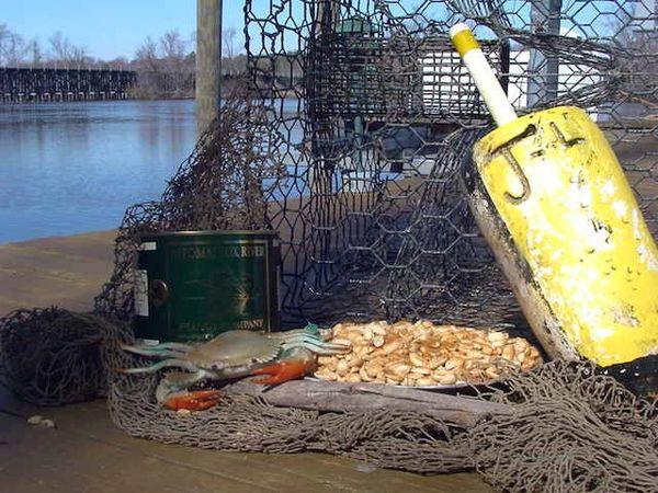 Crabshack Peanuts