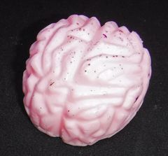 Brain Guest Soap