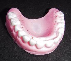Dentures Guest Soap