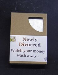Newly Divorced Soap