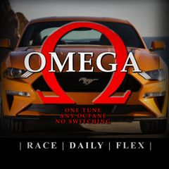 2018 Mustang GT 5.0 - Omega Tune (TUNE ONLY - for HP Tuners) - Basic Mods