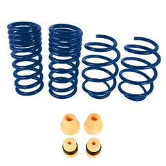 FORD RACING Street Lowering Springs - 2015-2017 Mustang GT & 2.3L EcoBoost Coupes