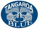 Tangaroa Blue Australia Marine Debris Initiative Database AMDI Source Reduction Policy Activism