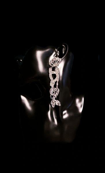 Fancy Formal Earrings