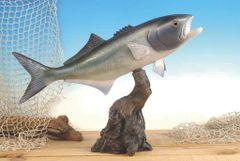 """TT229 Blue Fish 19"""""""